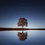 reflecting.jpg